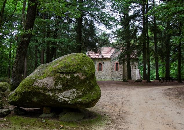 Chapelle-bois du Tay à Hambers en Mayenne