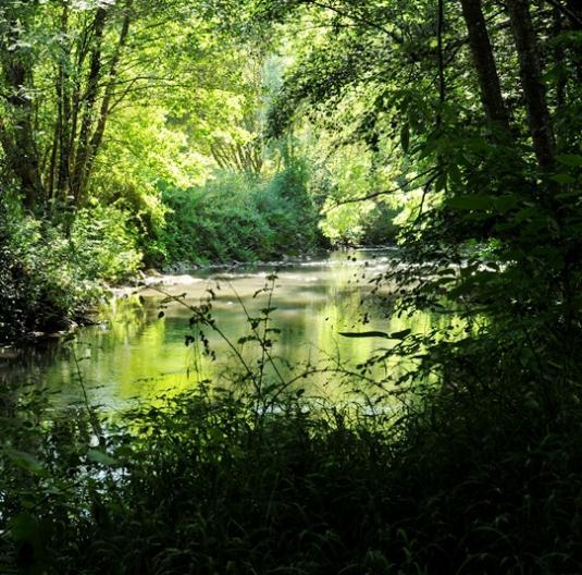 La rivière Erve à Saulges