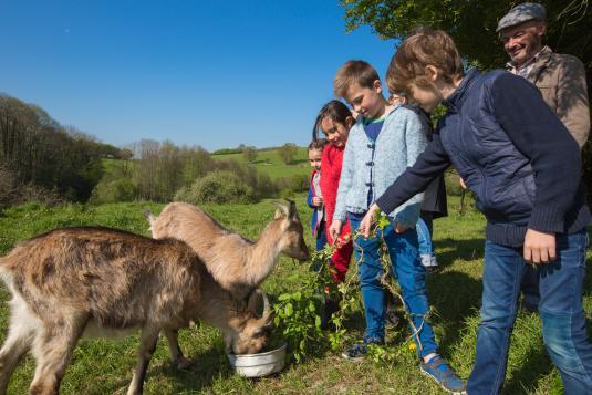Visite de ferme en famille, dans les Coëvrons en Mayenne