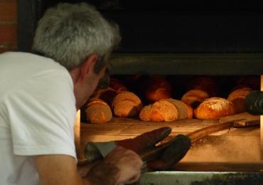 Visite chez un artisan boulanger bio à Saint-Pierre-sur-Erve